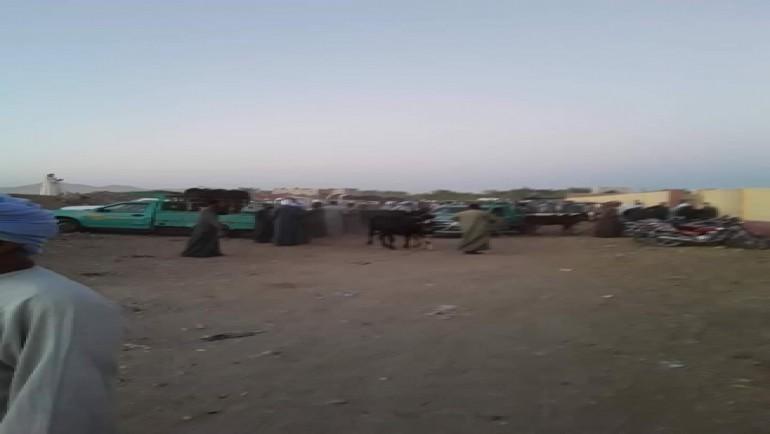 إصابة 6 أشخاص في مشاجرة بسوق الماشية بالحبيل شرق الأقصر